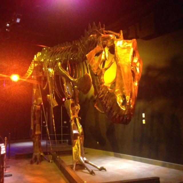 Moveable T Rex